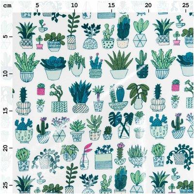 Geplastificeerd katoen cactus
