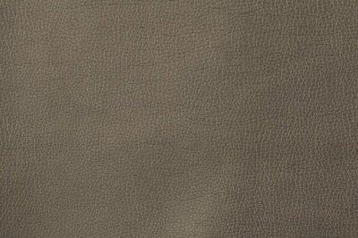 Kunstleer: bruin