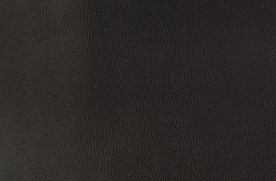 Kunstleer: zwart